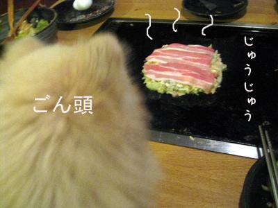 IMG_0089のコピー