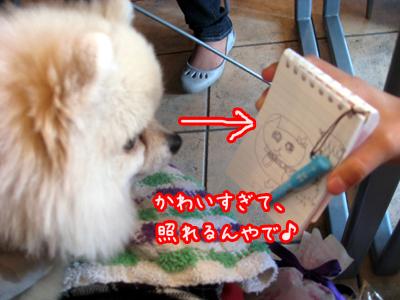 IMG_0301のコピー