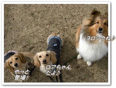 CIMG1370mよろしくね!