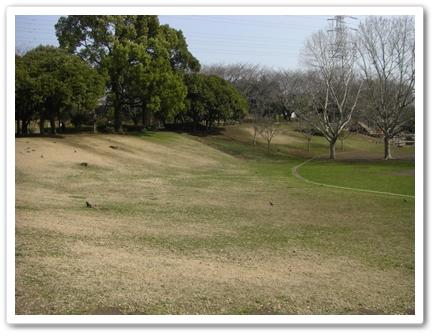 CIMG1985公園