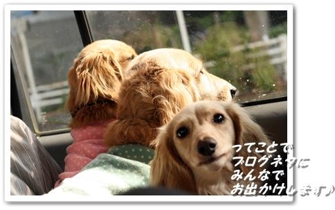IMG_7259ブログネタ!