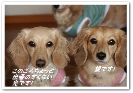 IMG_7183.jpg
