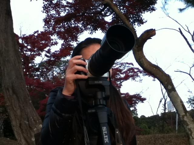 20101119yome.jpg