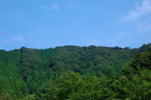 fukui2-1.jpg