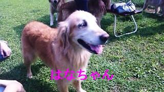 SH3D02410001.jpg
