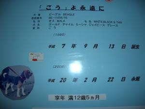 002_convert_20100214144253[1]