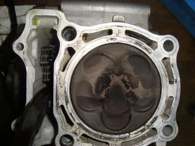DSC03565s.jpg
