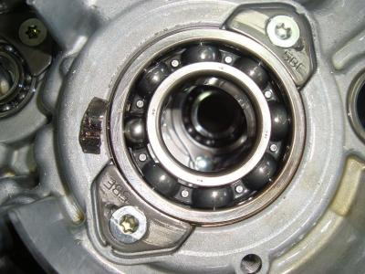 DSC03591s.jpg