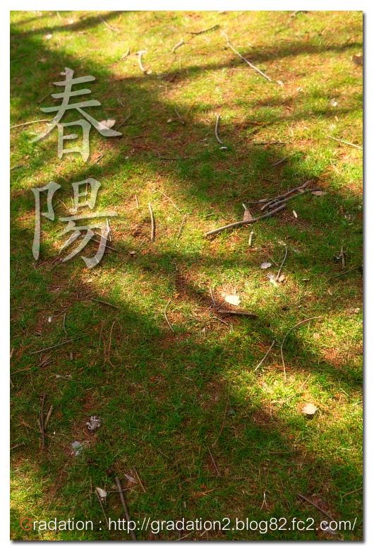 IMG_20100320eert5463yw637uhnbvdfse112.jpg