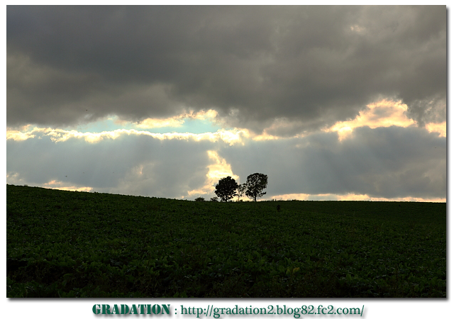 IMG_20101008uuyuyuriuyuy65431.jpg