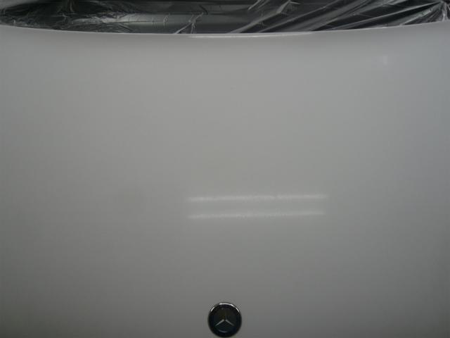 P1140486-910.jpg