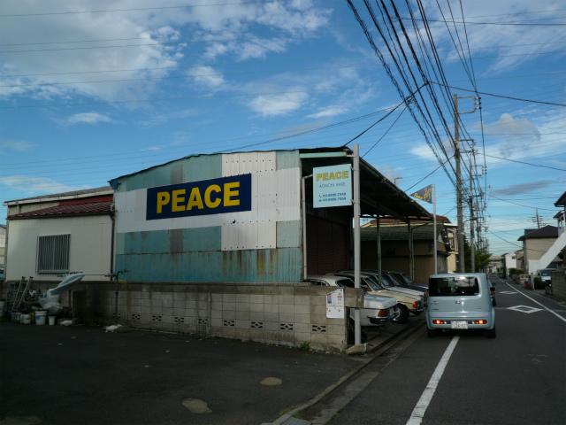 P1150476-914.jpg