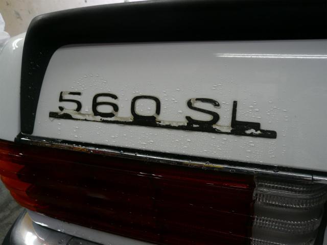 P1170150-969.jpg