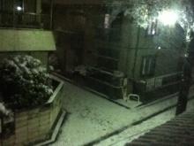 積雪2cmくらいかな…