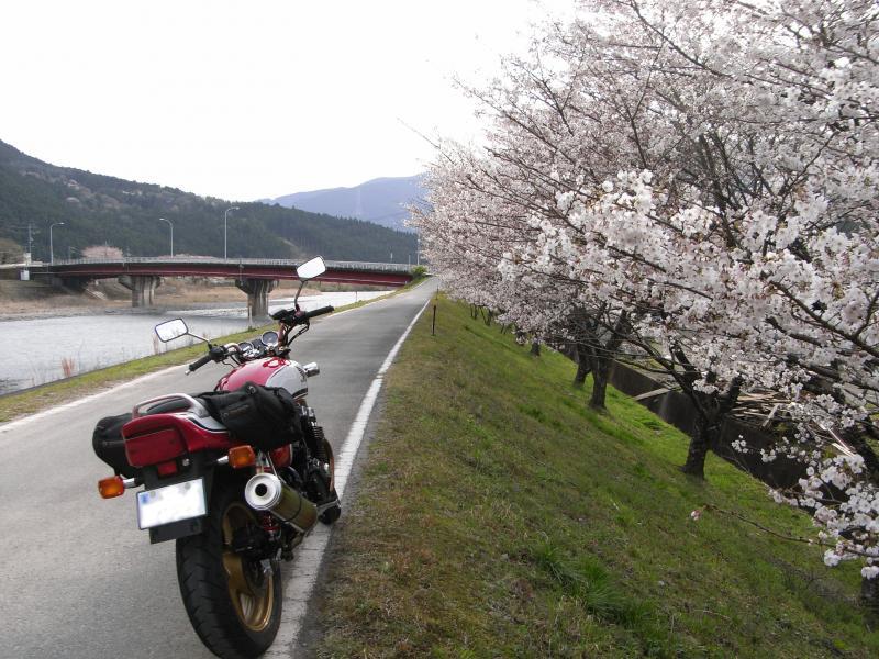 撮影:R473の気田川沿い平木大橋近辺