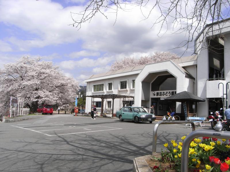 2千本桜の回廊『甚六桜』で有名な場所です