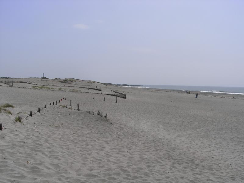 鳥取砂丘を想像したら大違いです(´д`;