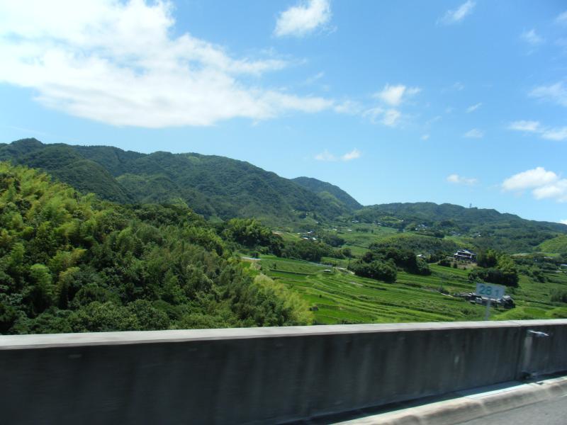 棚田と山の風景が青々として気持ちイイ(・∀・)