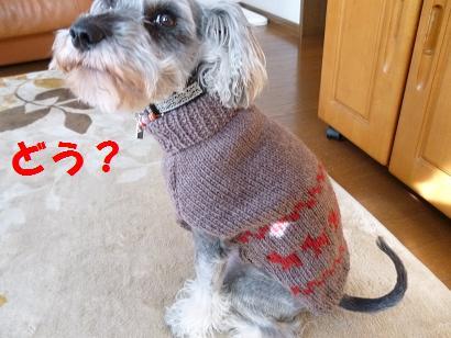 セーターどや顔
