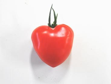 ハートトマト♪