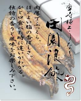 宮崎極上うなぎ 田園浪鰻