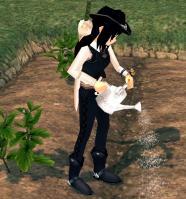 mabinogi_2010_05_15_007.jpg
