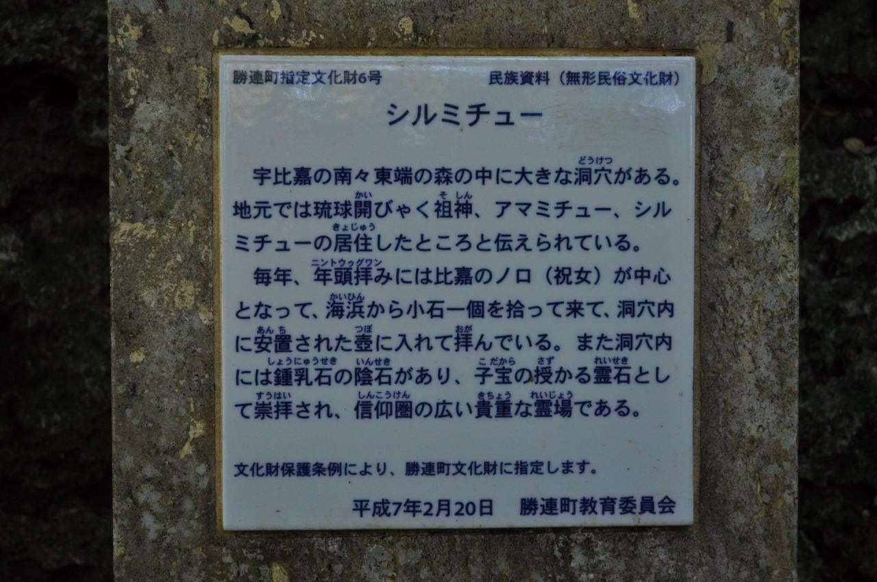 DSC_0419_01.jpg