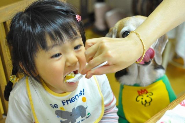 4_20110601181038.jpg