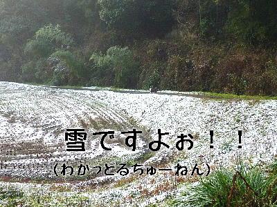 100201_03.jpg