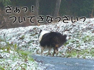 100201_04.jpg