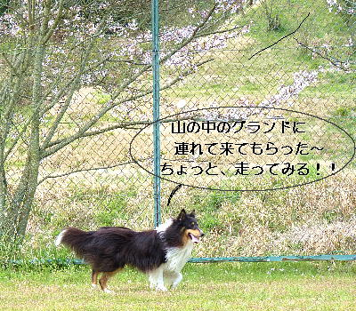 100423_02.jpg