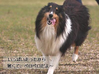 100423_09.jpg