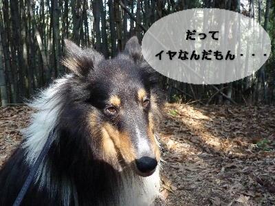 100507_07.jpg