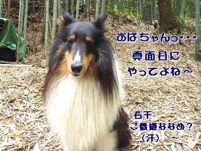 100702_01.jpg