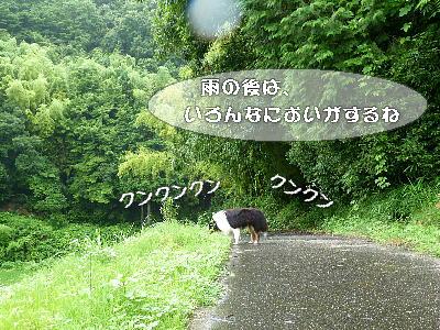 100714_01.jpg
