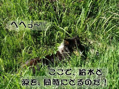 100805_09.jpg