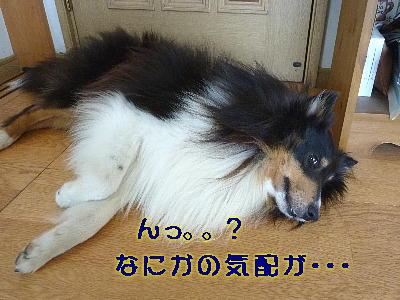 100817_01.jpg