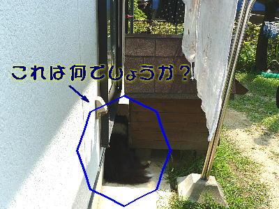 100821_02.jpg