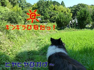 100901_03.jpg