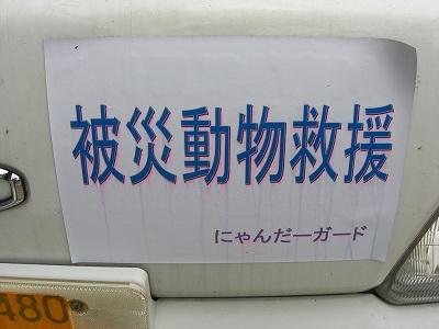 CIMG7948.jpg