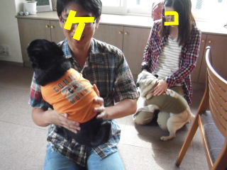 2011_0911au9-2utuwa0001b.jpg