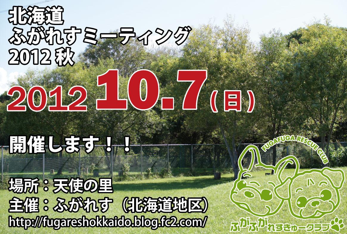 ミーティング2012秋フライヤー