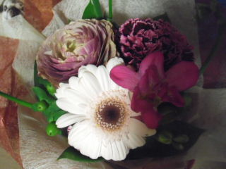 2012_0416sango0005b.jpg