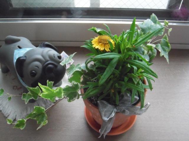 2012_0611fugami0053.jpg