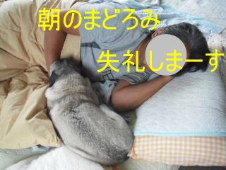 2012_0929cmh0020b.jpg