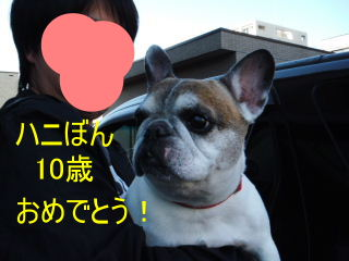 2012_1014papi0004b.jpg