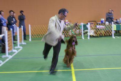 20111106アロー君2