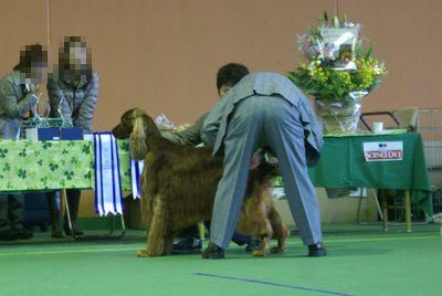 20111106ガイ1