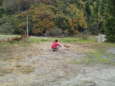 20111127roku09