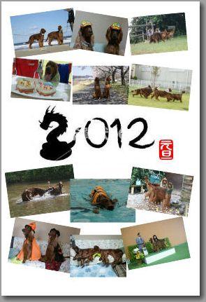 20120101nenngajyou1